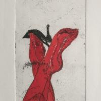 Rote Beine_5413 - Kopie