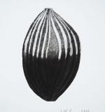 Frucht-6-111